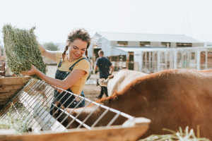 4 Things You Need to Know About Farm Succession